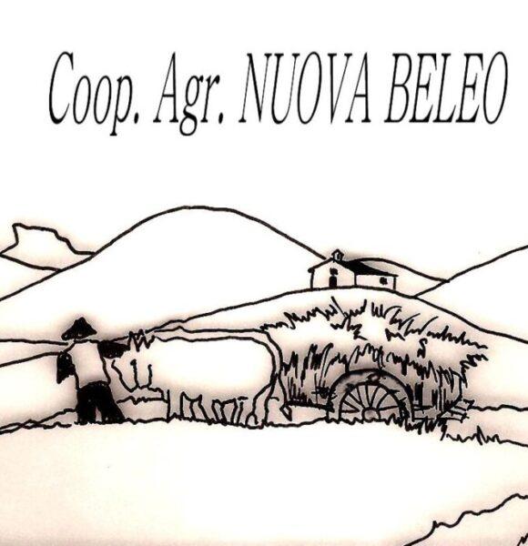 DISEGNO COOP BELEO